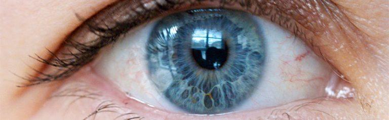 iridologie-beate_cailteaux